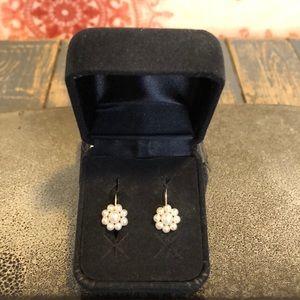 Jewelry - 14kt fresh water pearl leverback earrings✨